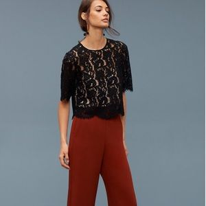 • Wilfred Aritzia • Lapointe Lace Blouse Black Sm